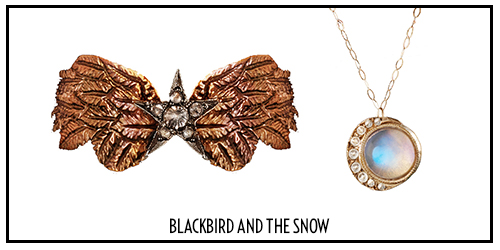 Blackbird and the Snow